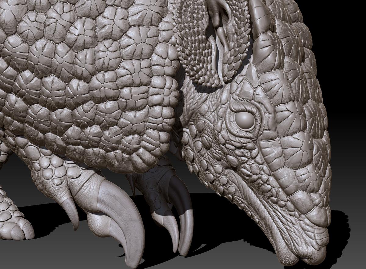 armadillo_head-close