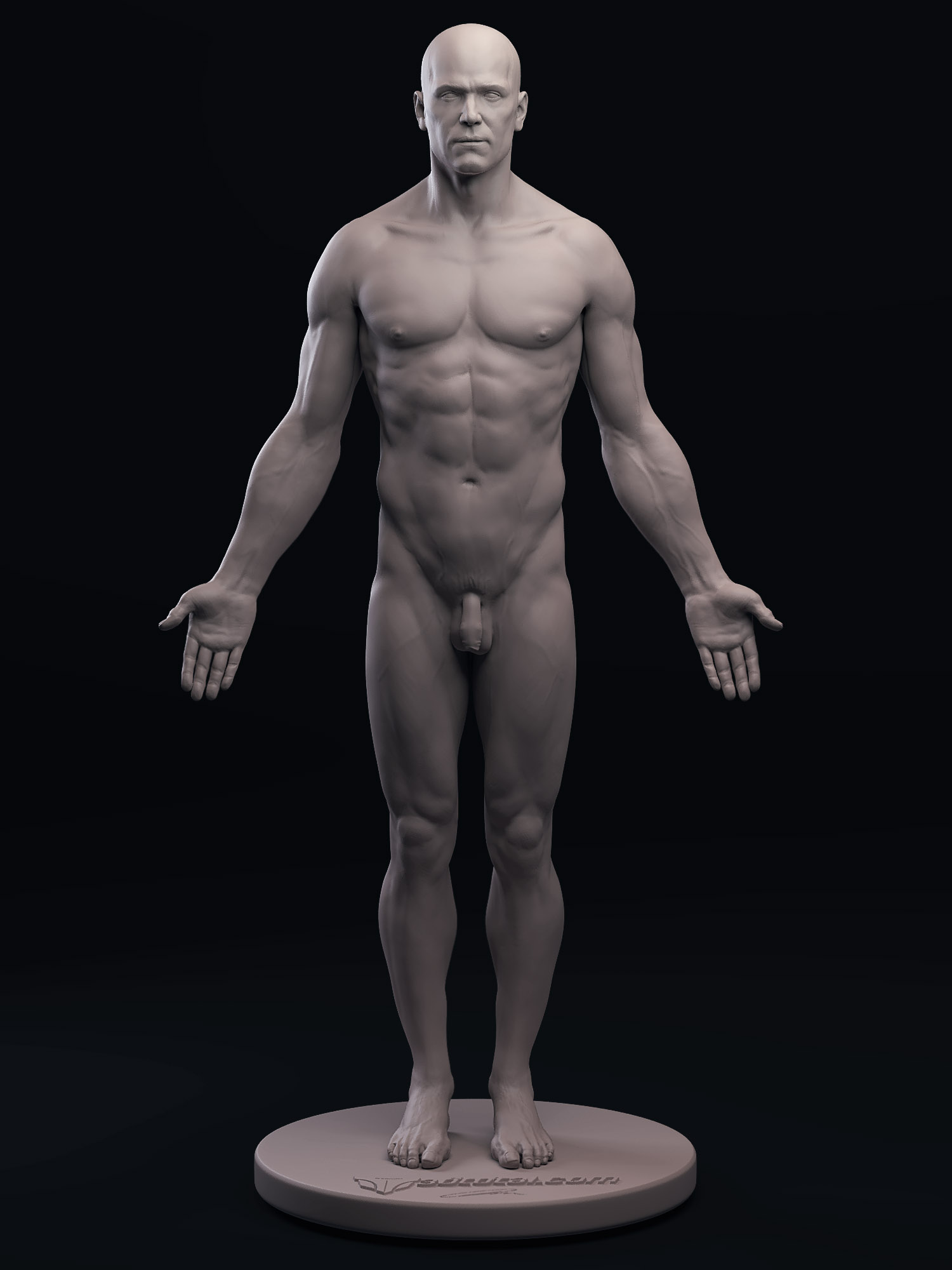 anatomyfigurefull.jpg