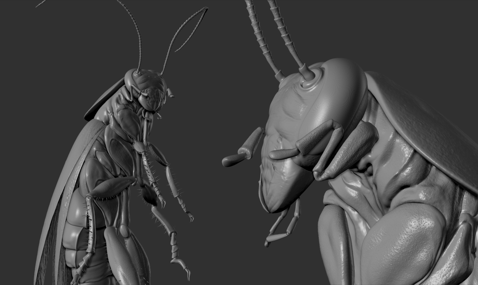 Cockroach-sculpture-04.jpg