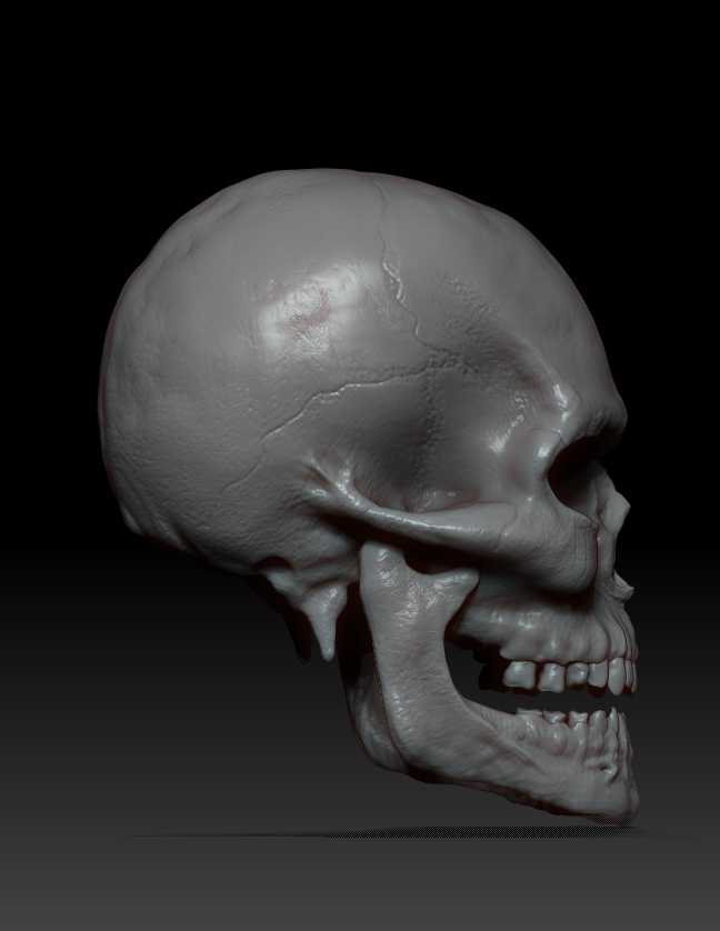 ZBrush Documentdfcxsde34.jpg