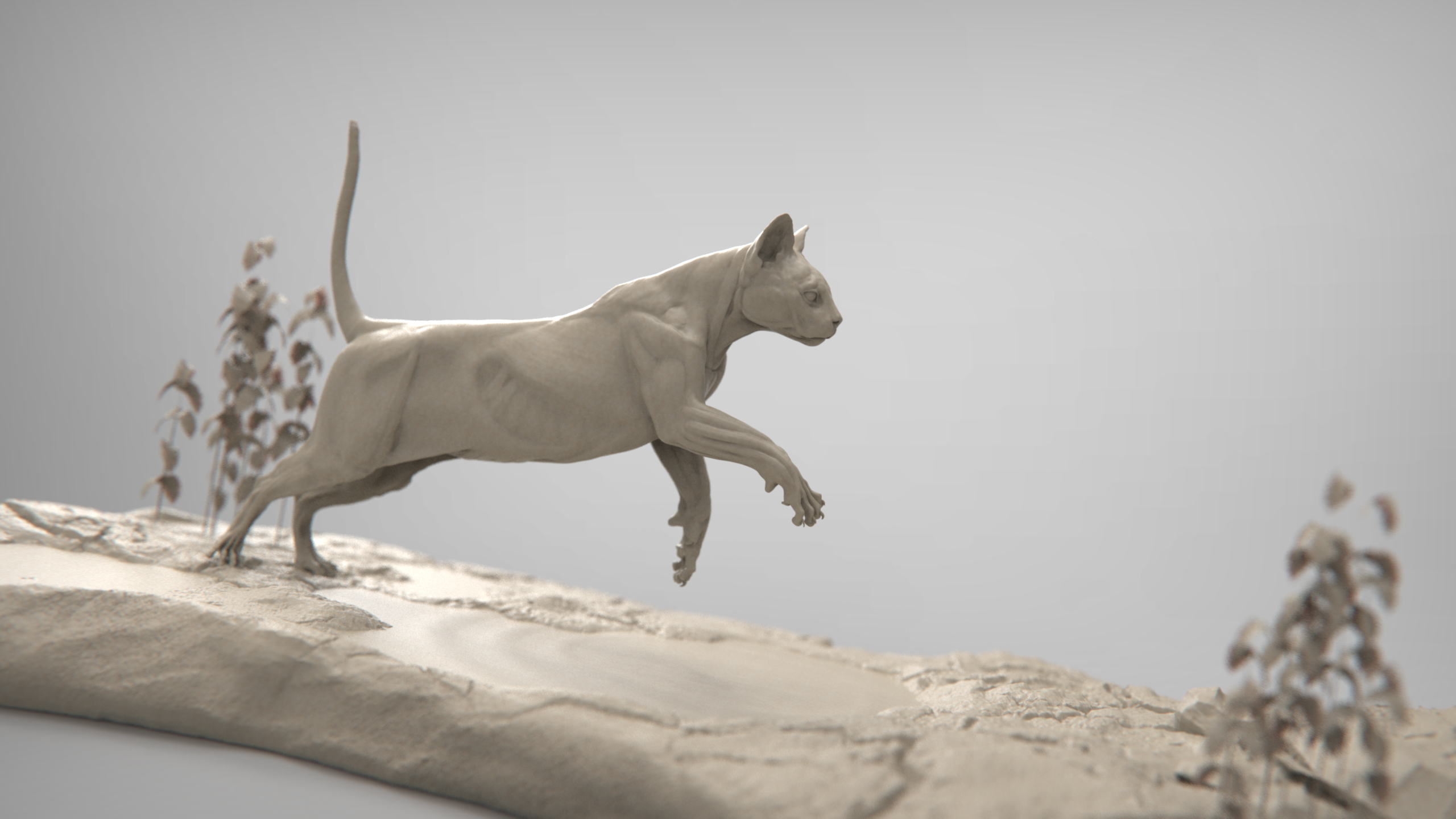 MarcusTrolldenier_SculptingAnatomy_week4_domestic_cat_04.jpg