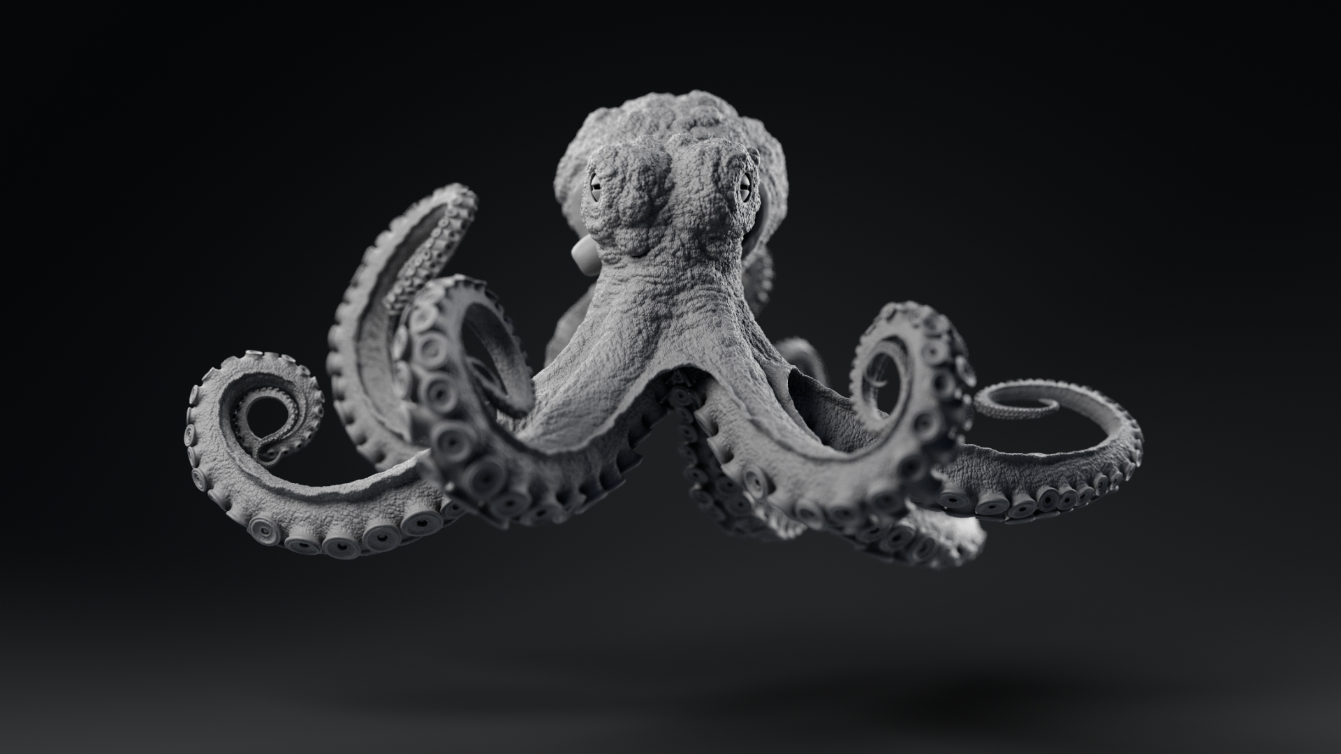 Octopus_model_TurntableFrames_Grey_ZbrushCentral_v021_0001.jpg