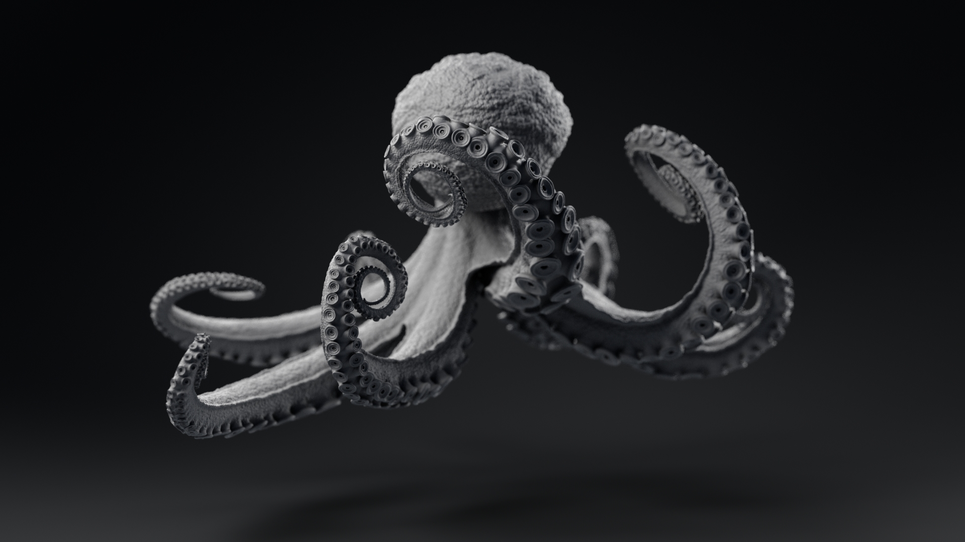 Octopus_model_TurntableFrames_Grey_ZbrushCentral_v021_0061.jpg
