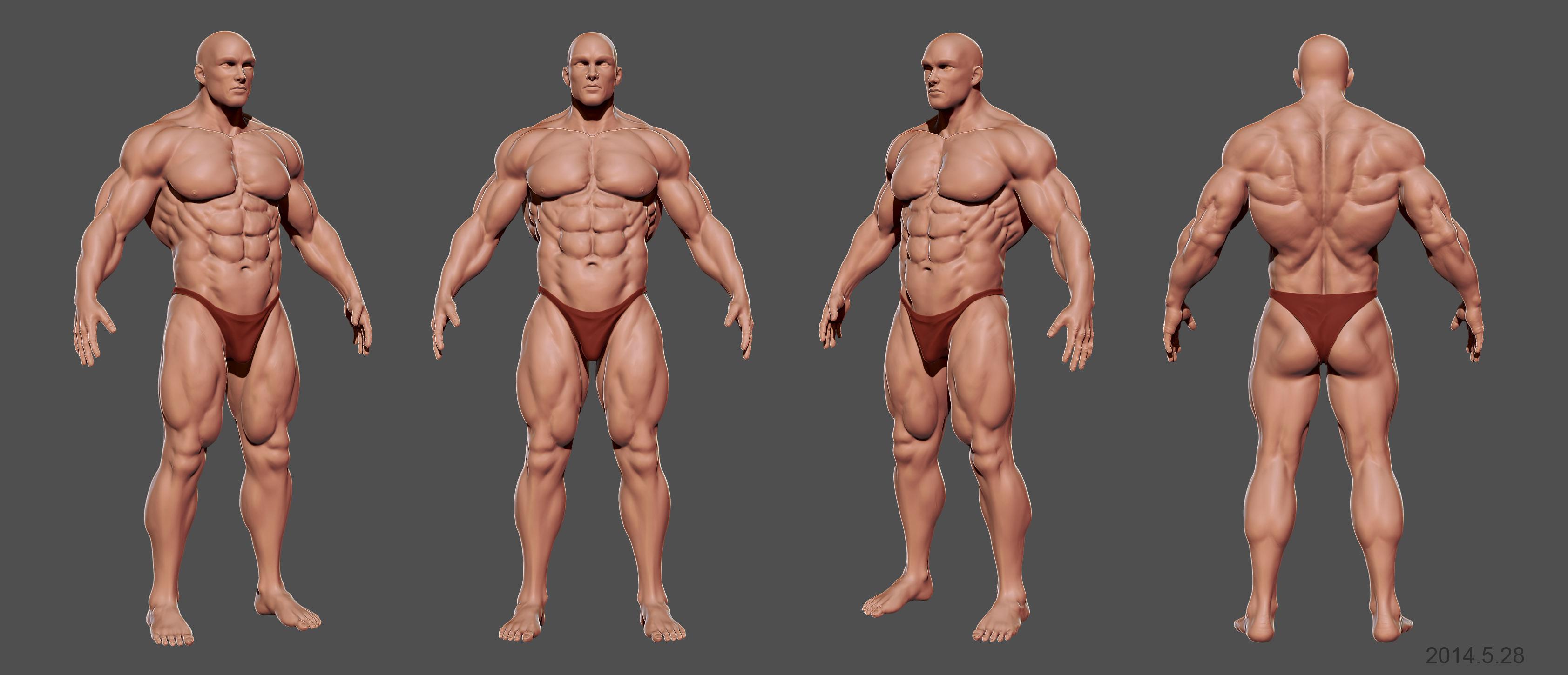 body texture 3d - HD3368×1451