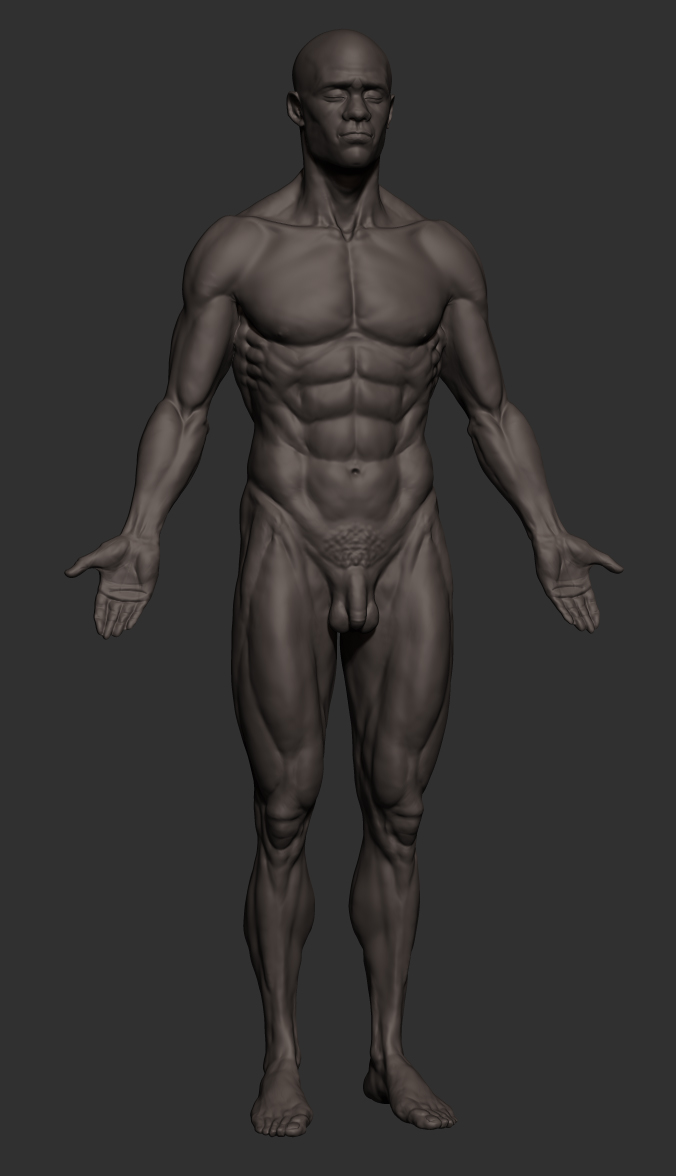 Blackmale_anatomy_Front1.JPG