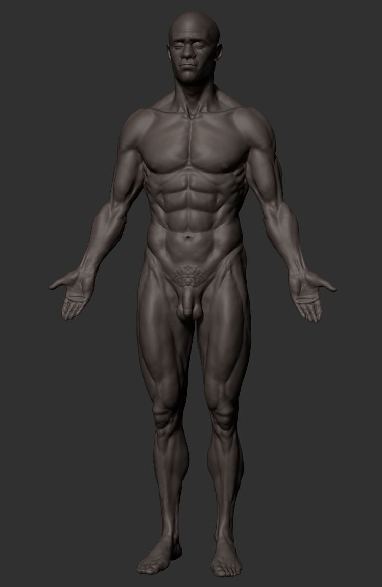 ZB_Anatomy_Body_blackmale15r.JPG