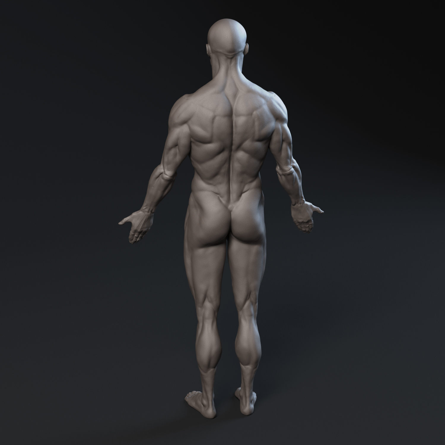 Black_Male_Body5.jpg