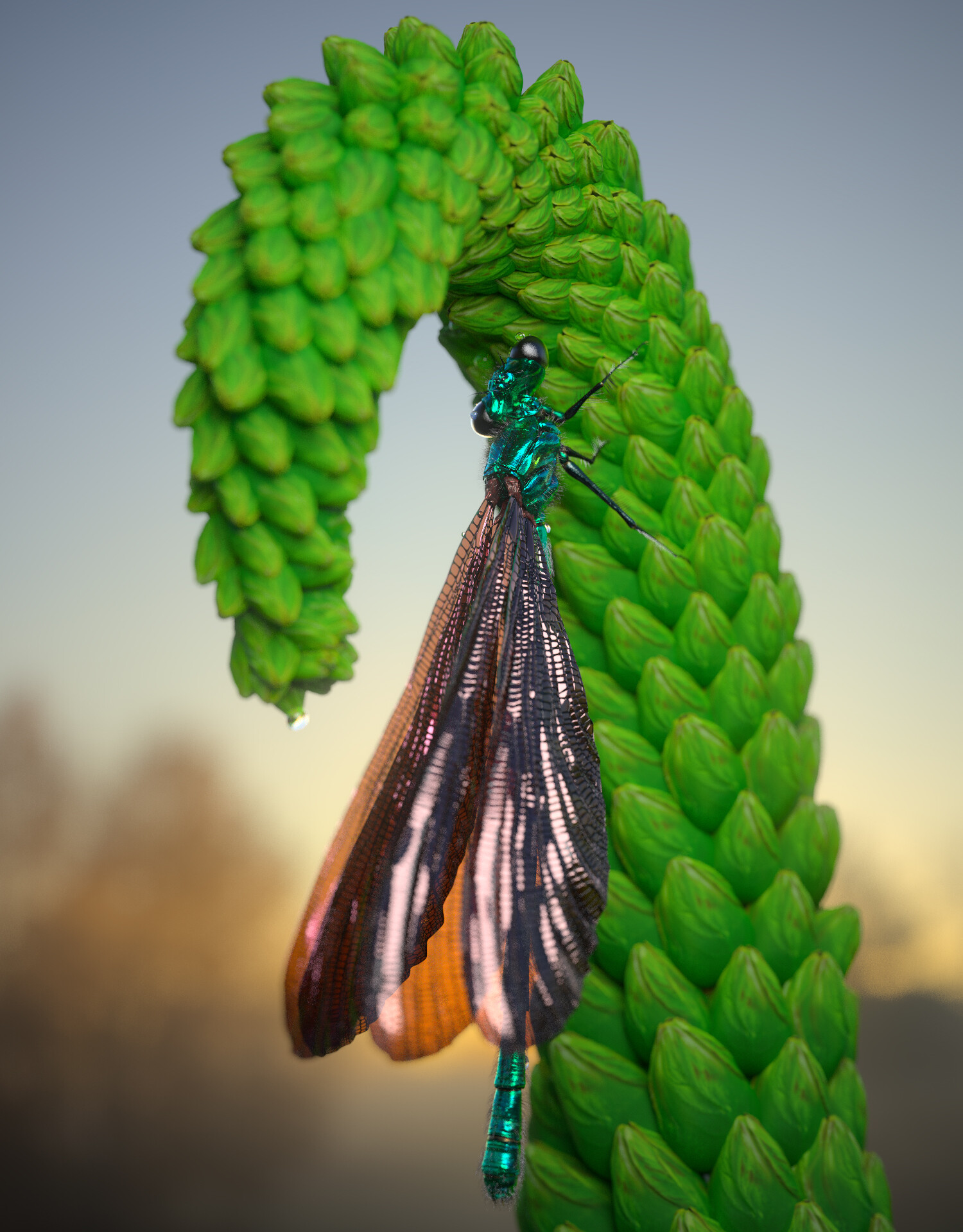 eric-keller-cmaculata-beauty-07