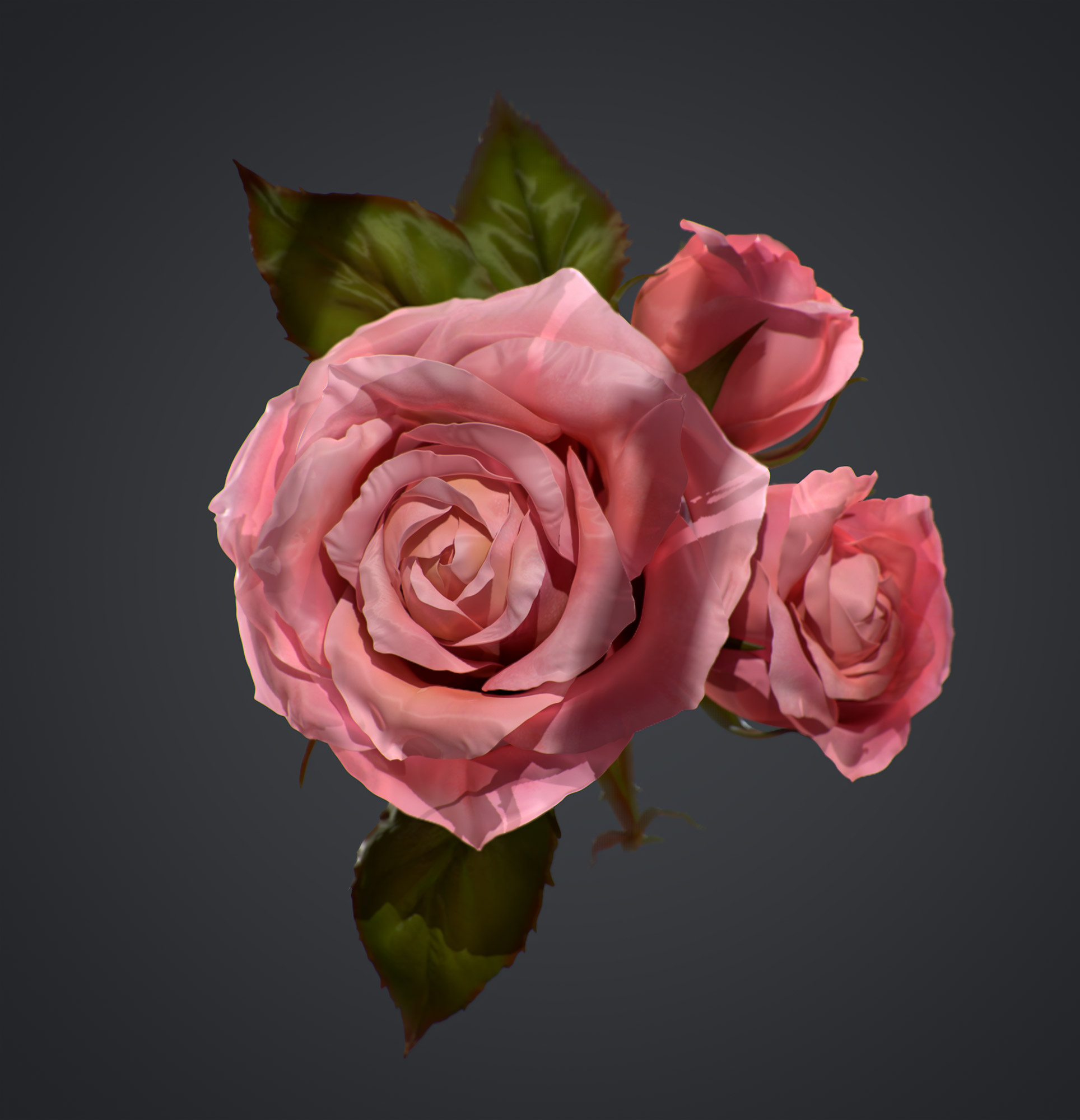 rose_2_001_small